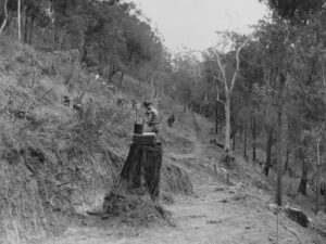 statelibqld_1_106376_construction_workers_on_mount_nebo_road_queensland